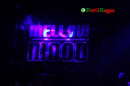 Mellow-Mood-Estragon
