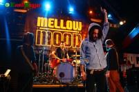 Mellow-Mood-Firenze