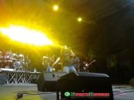 Alborosie-Parabiago-concerto