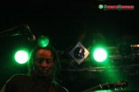 The-Original-Wailers-Al-Anderson