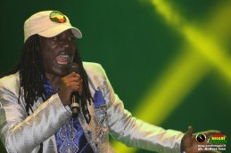 alpha-blondy-campovolo-reggae-7