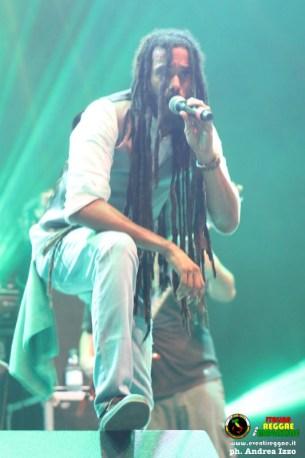 lion-d-campovolo-reggae-7