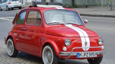 Photo of Raduno delle Fiat 500 ad Orta