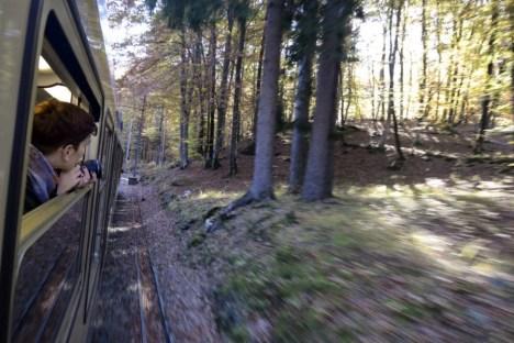 Treno del Foliage - Ferrovia Vigezzina-Centovalli - ph. Vittorio Giannella