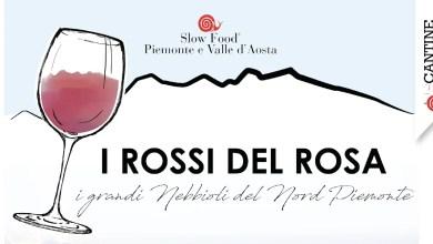 I Rossi del Rosa 2019