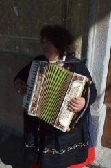 Fisarmoniche valsesia