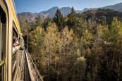 Treno del Foliage - Ferrovia Vigezzina-Centovalli - ph. Giovanni Tagini (8)