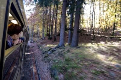 Treno del Foliage - Ferrovia Vigezzina-Centovalli - ph. Vittorio Giannella (4)