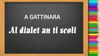 """Photo of Gattinara: 4° corso di """"Dialetto"""" alle elementari"""