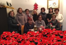 Photo of Ass. IGEA e le Stelle di Natale. Ringraziamento