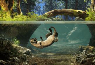 st-louis-aquarium-tommy-otter_credit-groove-jones