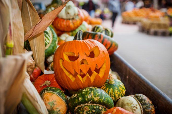 Grusel-Oktober,Karls, Elstal ,Freizeit,Unterhaltung,#Halloween ,#Berlin
