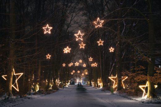 Christmas Garden, Berlin,Event,Eislaufen,Musik,Lichterfest,VisitBerlin,BerlinEvent