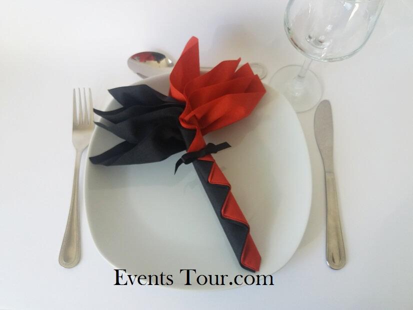 pliage de serviette palmier noir et rouge x1 ref 10048