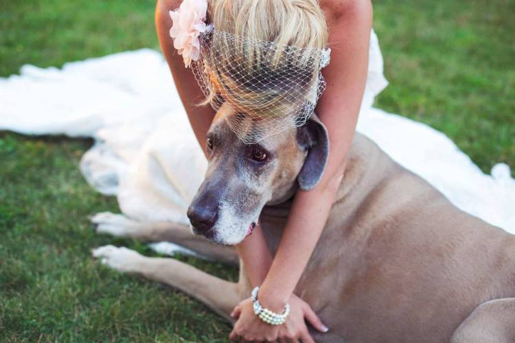 Events By L, Wedding at The Shores of Turtle Creek, Real Wedding Planners, Illinois Weddings