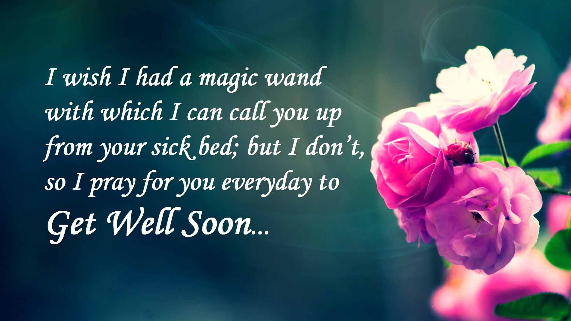 Sweet Lovely Get Well Wishes 2017 Hd Images Free Download