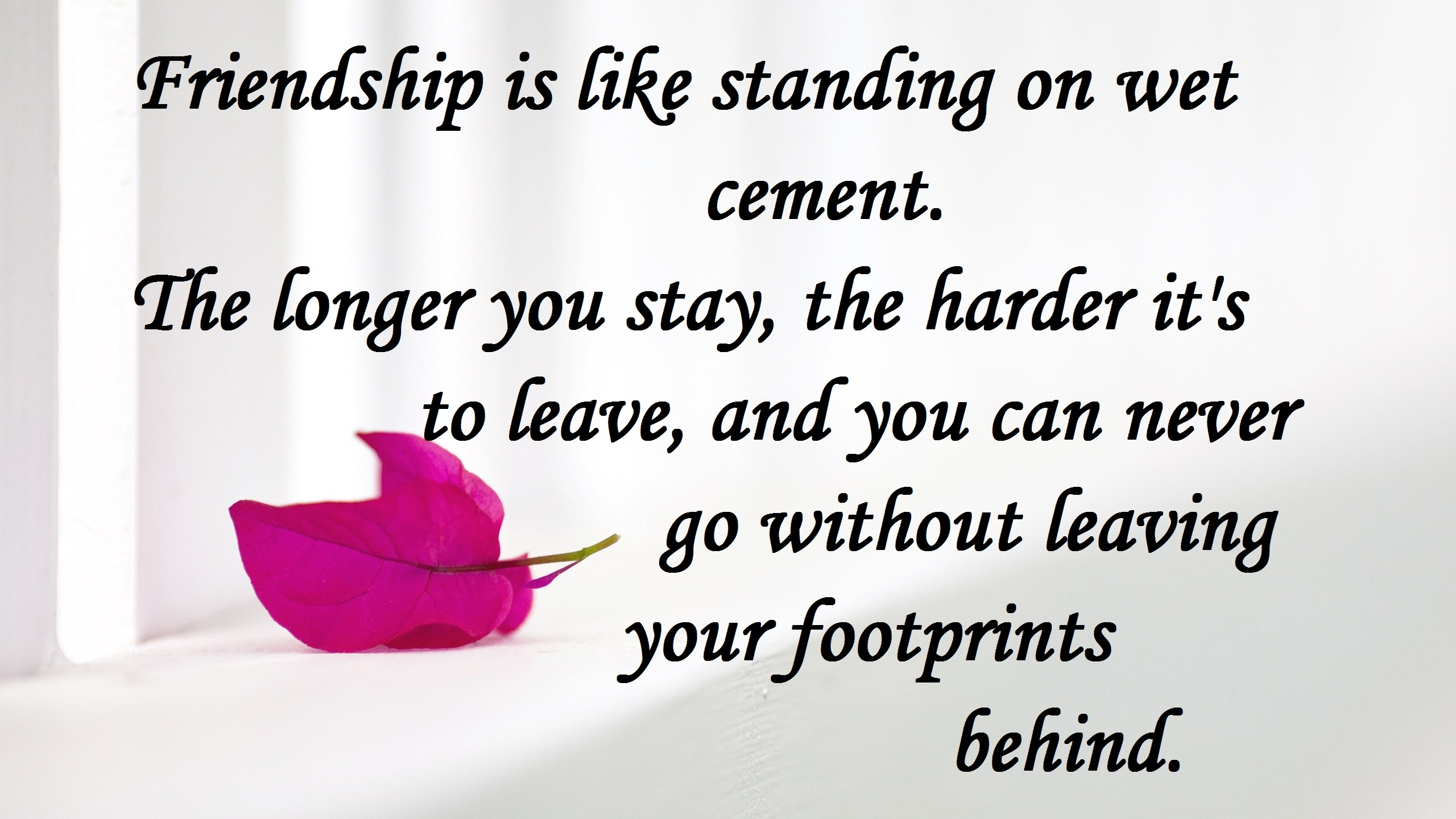 beautiful friendship quotes hd images