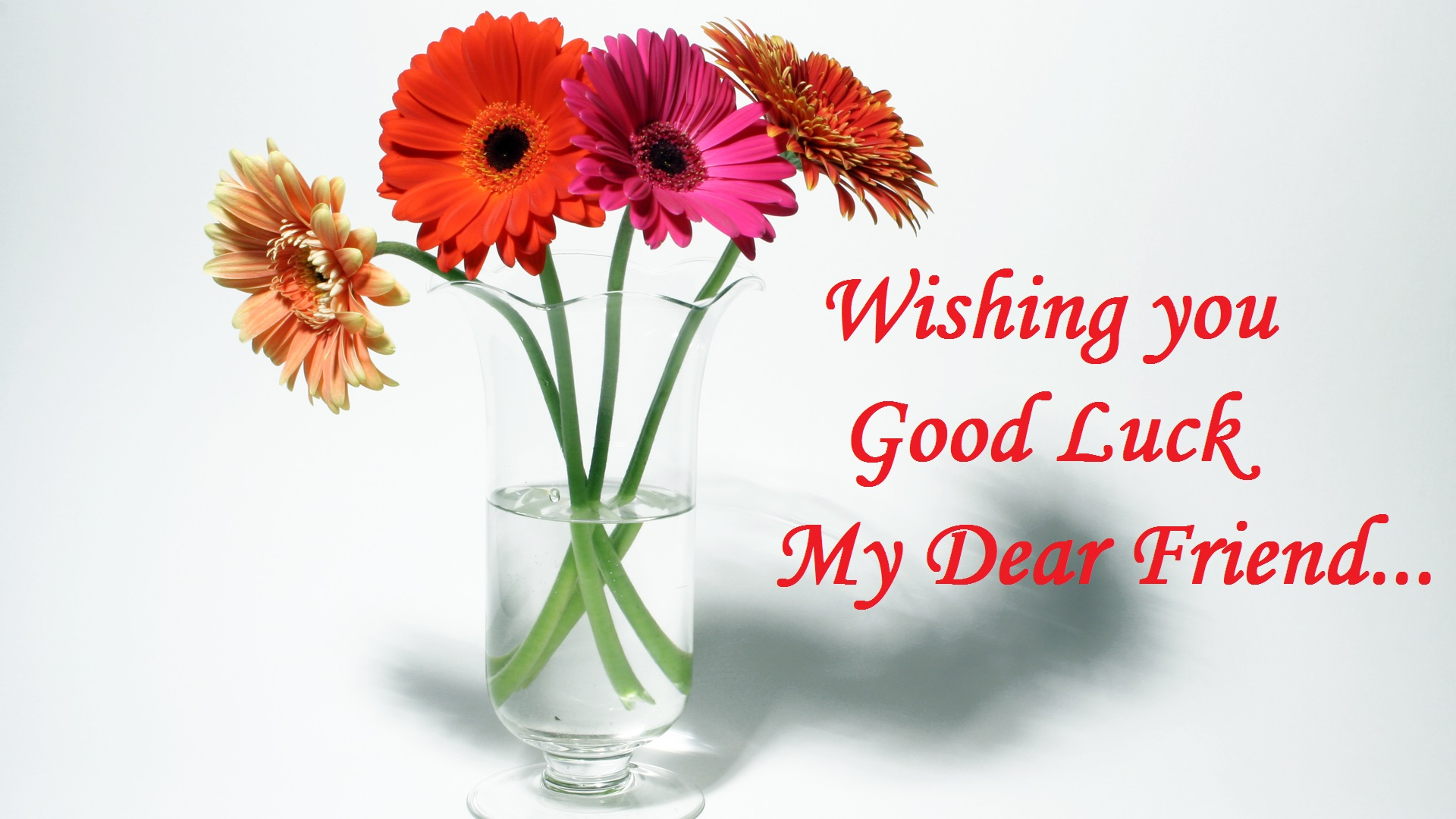 Good luck wishes for best friend