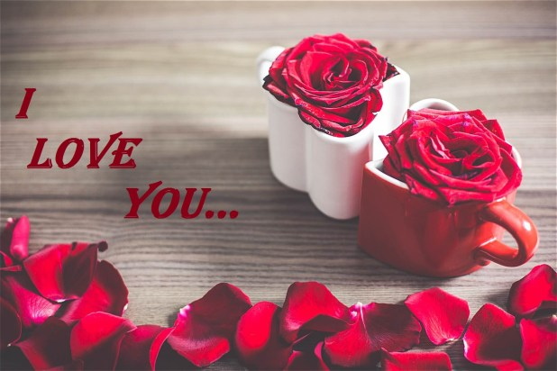 Beautiful I Love You Images 2017 Hd Pictures Free Download