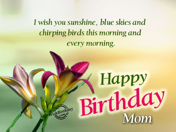 I Wish You Happy Birthday Mom image
