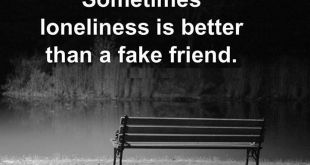 Sometime loneliness is better than fake friend quote