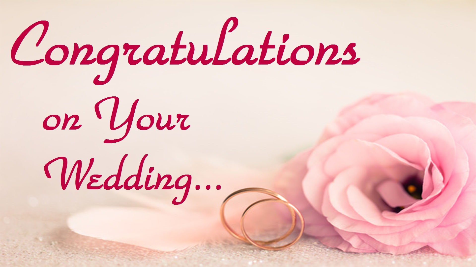 Wedding Congratulations Images Hd Pictures Wedding Greeting Cards