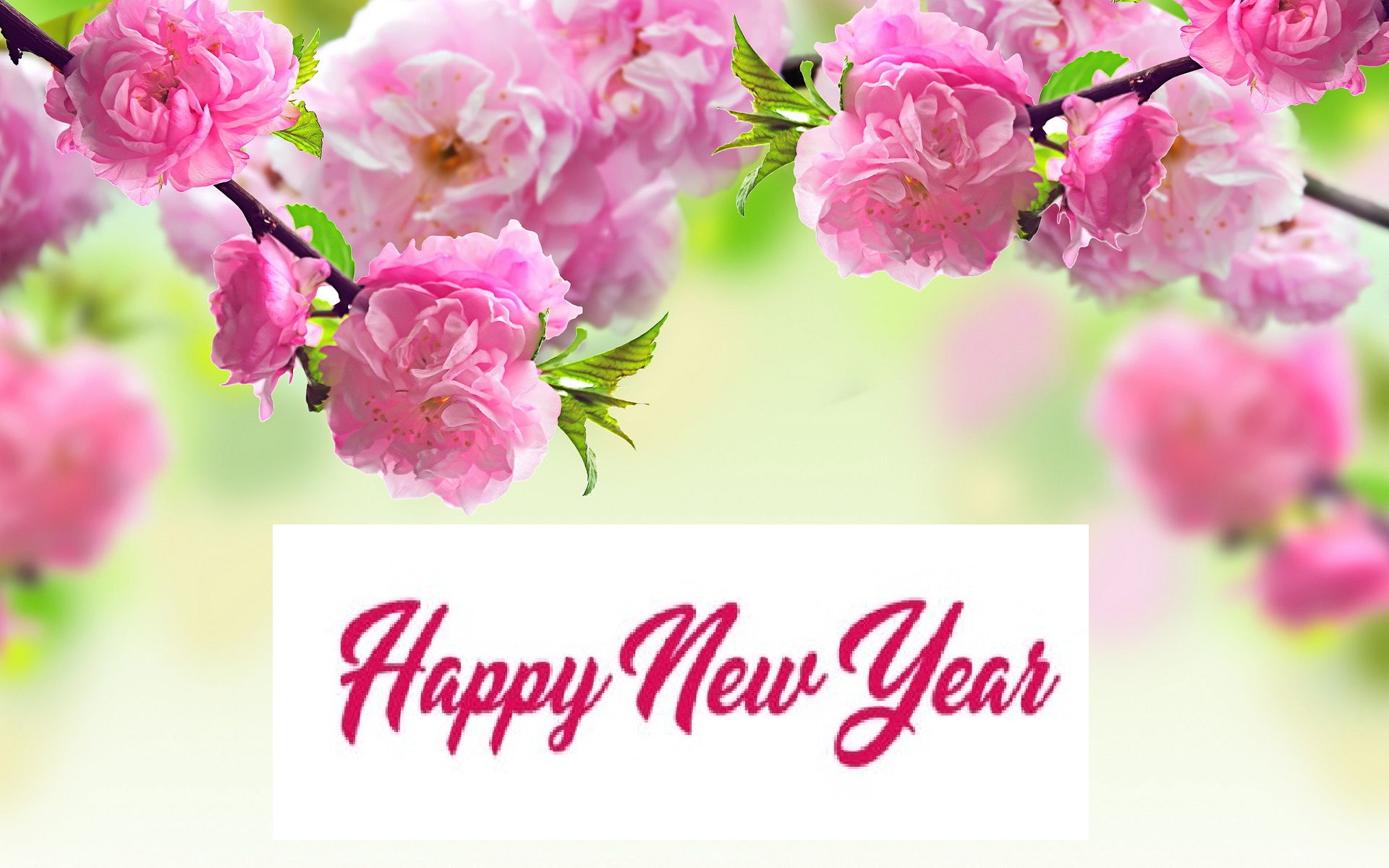 Happy New Year 2018 Images U0026 HD Wallpapers
