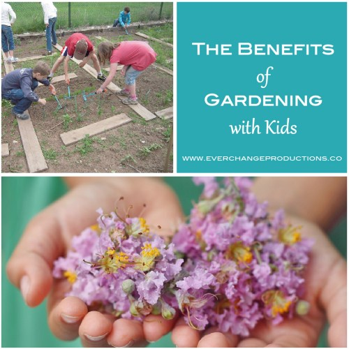 Gardening with kids have countless benefits. They can learn so many school lessons and life lessons through gardening. Check out this video and bring these lessons home today!