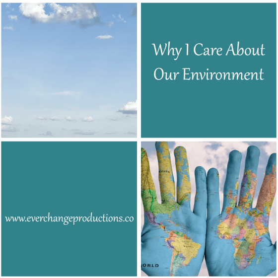 There are so many reasons why we should put in more effort to care about our environment. Learn more about my journey and reasons for environmental concern.