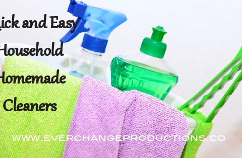 Homemade cleaners aren't just a go-green sustainable living thing. They're perfect for a variety of reasons. Come see if they're right for you!