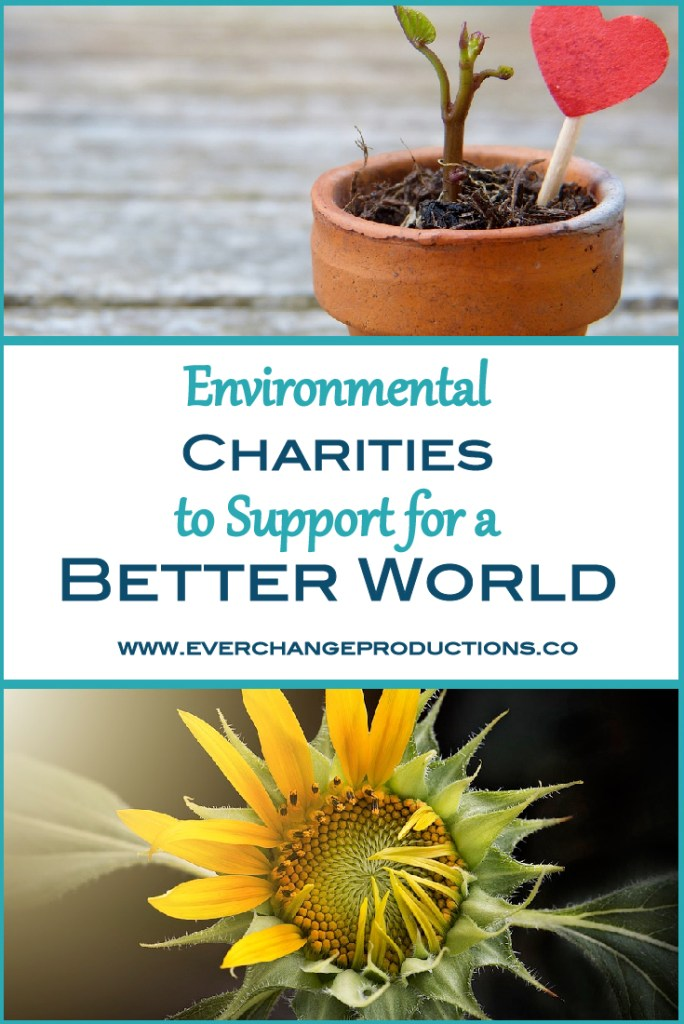 Environmental charities and random acts of kindness are near to my heart. This year to celebrate Random Acts of Kindness week, February 11-17, I decided to share my favorite environmental charities working to make a better world for us.