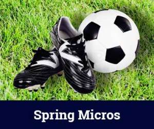Spring Micros registration
