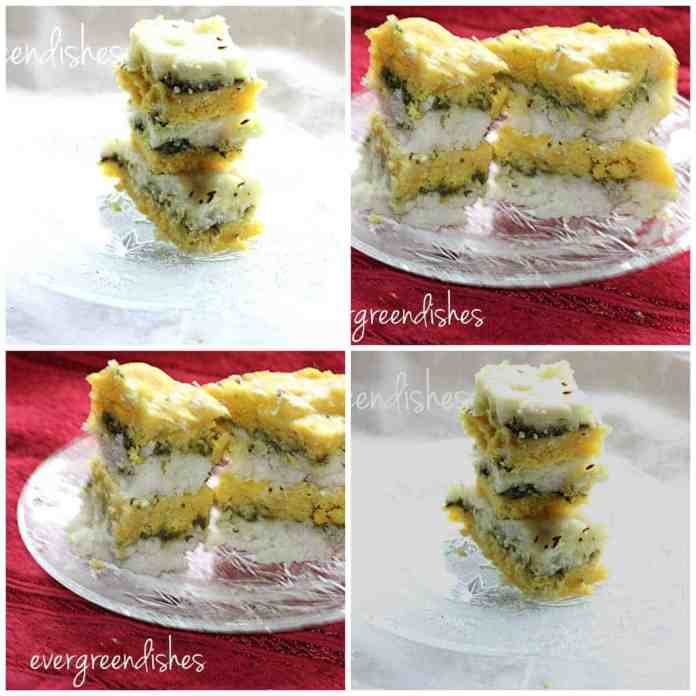 tricolour dhokla collage