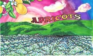 a 1945 - Apricots