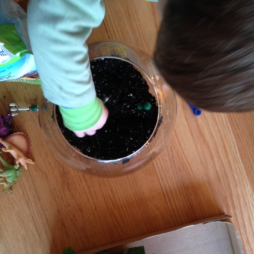 Adding the soil.