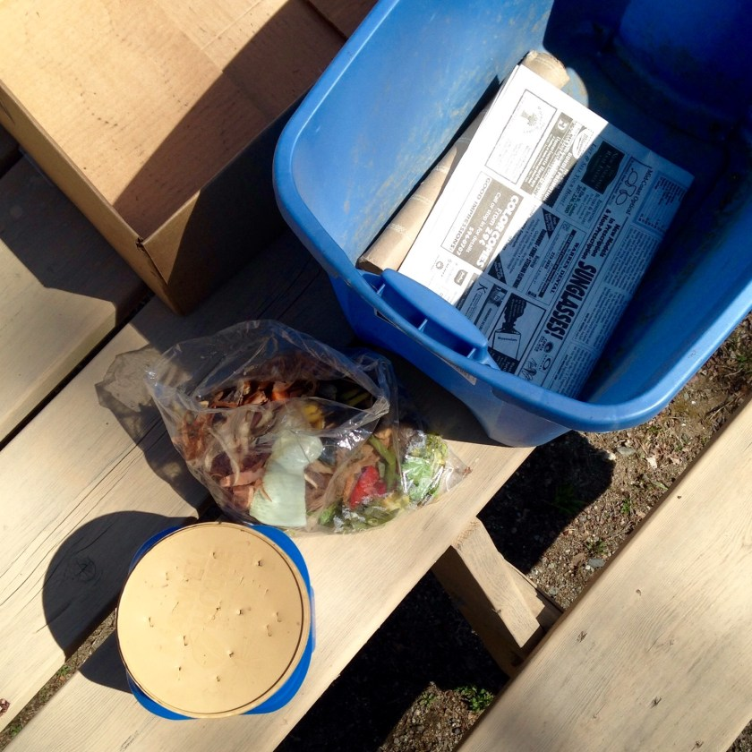 Gather items for worm bin assembly.