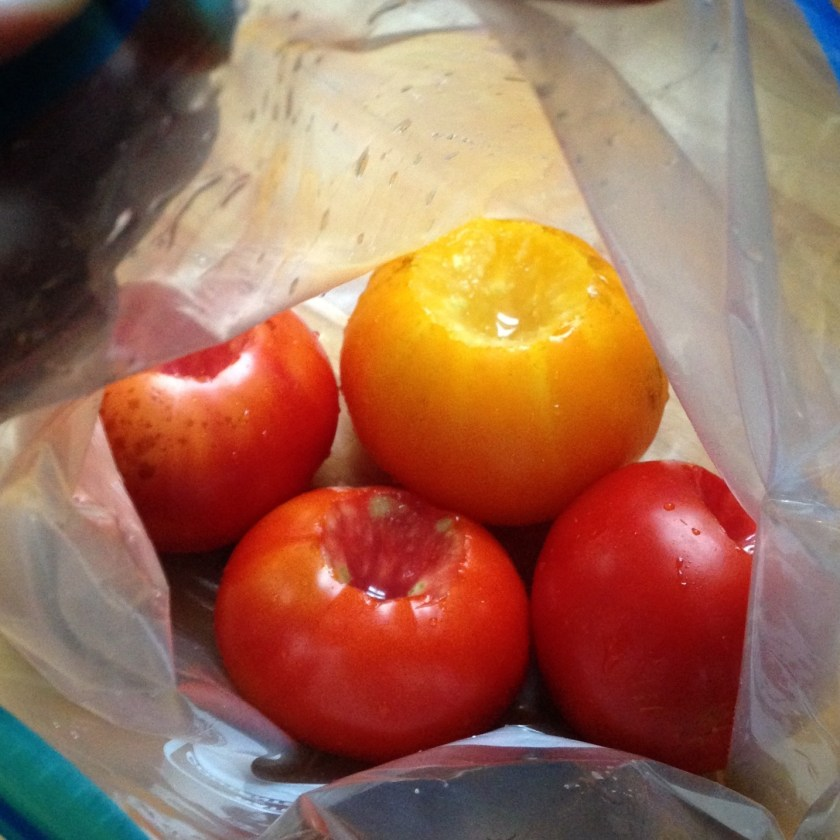 Place tomatoes in zipper bag.