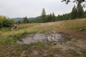 we had to get around a big mud puddle in our site