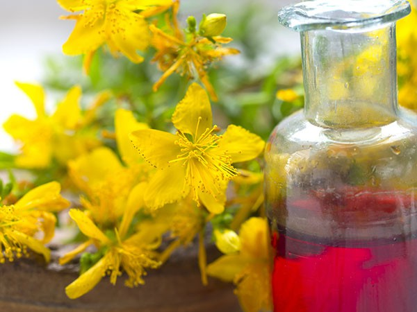 Image result for Primary Advantages of Pure Essential Oils