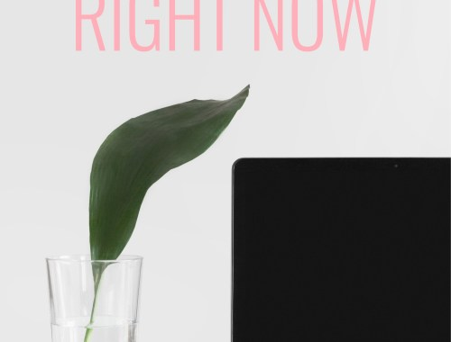 Ever wanted to know how to start a blog but don't have a clue? I'll talk you through the basic tech you need to create a professional blog/website!