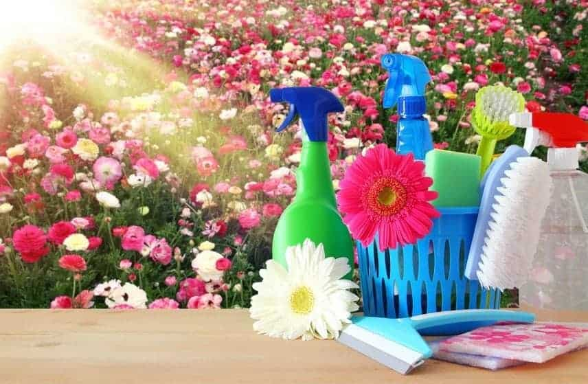 spring-cleaning-with-spring-fever