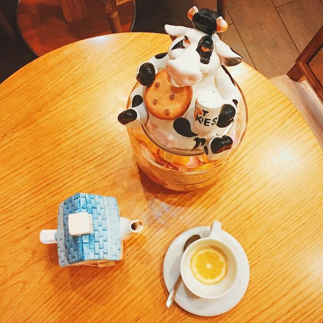 Pretty in tea ☕️ #earlgrey #tea #divecattive #igpistoia