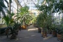 plantage amsterdam