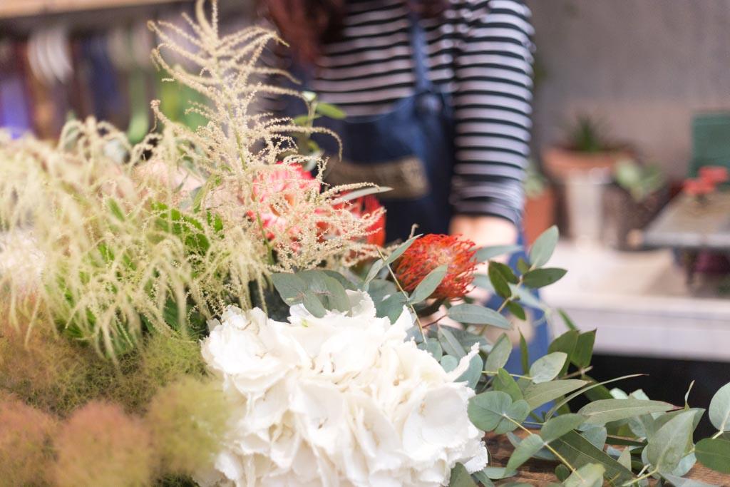 artemisia fioristi
