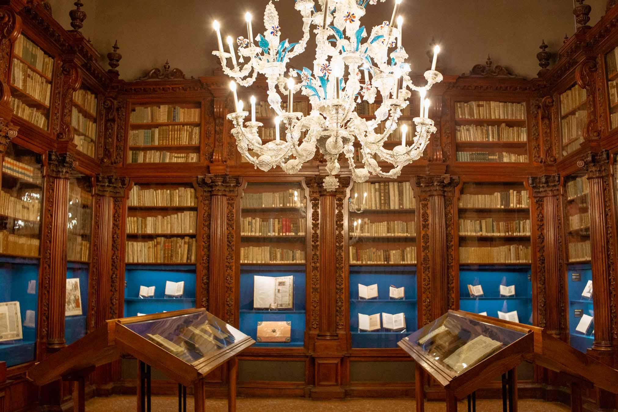 biblioteca del museo correr