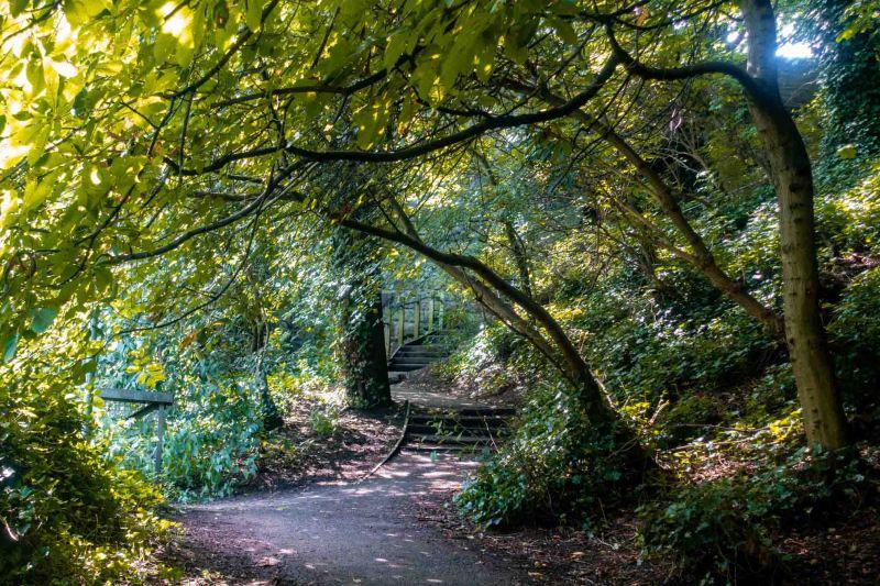 sentiero nel verde dove passeggiare a edimburgo, dean village