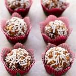 5-ingredient, No-bake Coconut Cranberry Energy Bites | Recipe at EverydayEasyEats.com