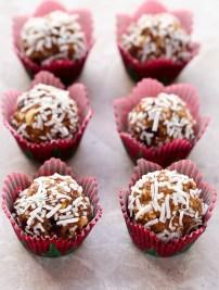 Cranberry Coconut Snack Bites