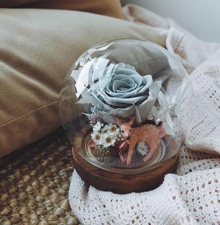 Deer Love (preserved flower globe 永生花)