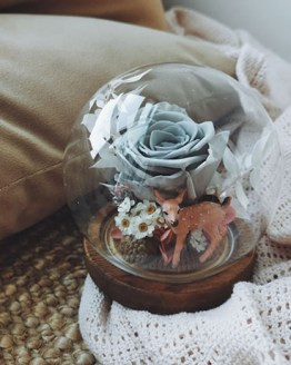 Deer Love (preserved flower globe 永生花)